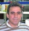 Vasileios Michailidis's picture